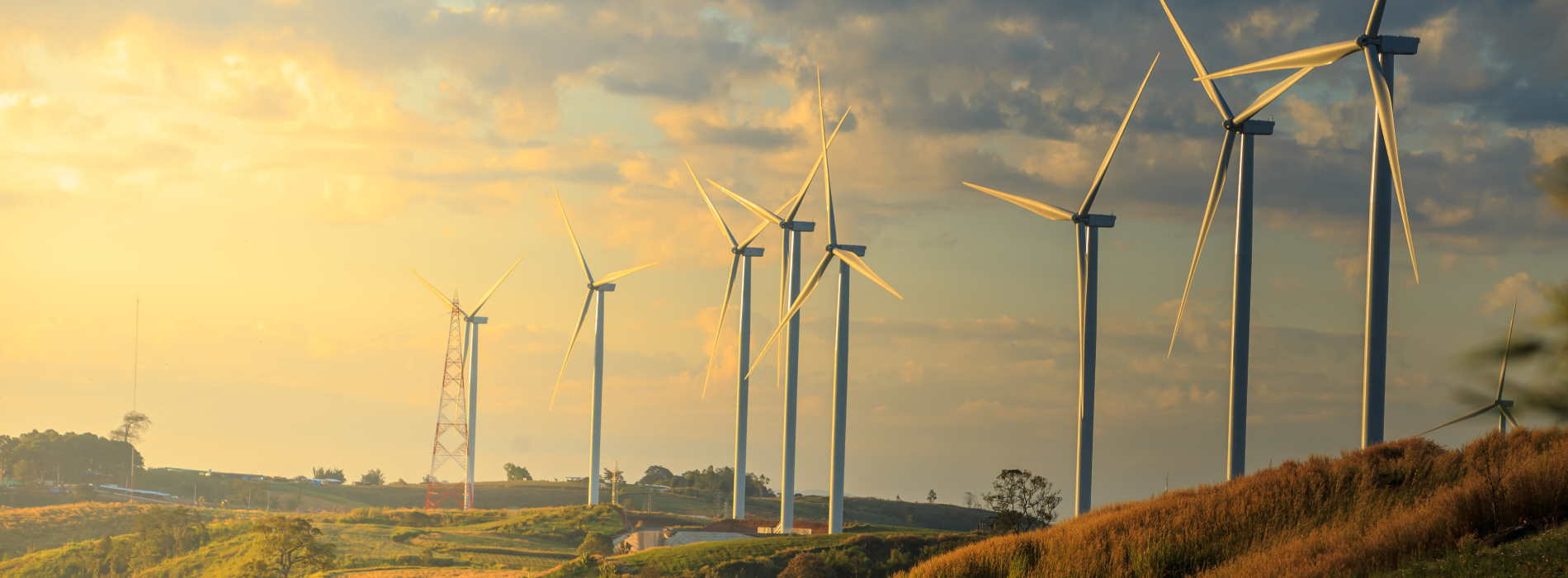 Header image: Renewable energy - source Shutterstock